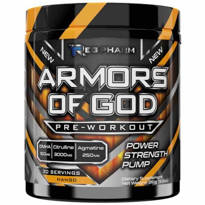 REG PHARM ARMORS OF GOD, 261 г