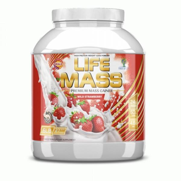 LIFE MASS, 2724 g